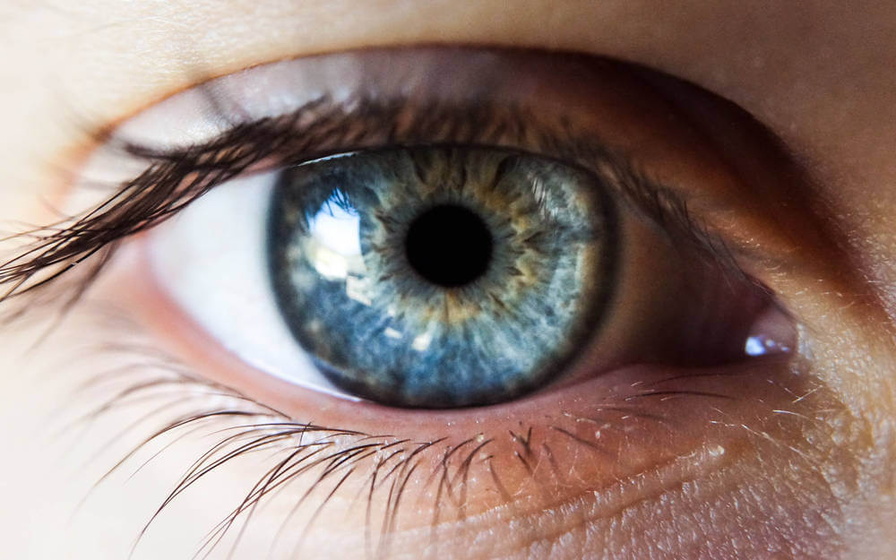 Glaukom & Netzhauterkrankungen